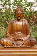 Balinese Mahogany Wood Buddha Statue, Abhaya Mudra